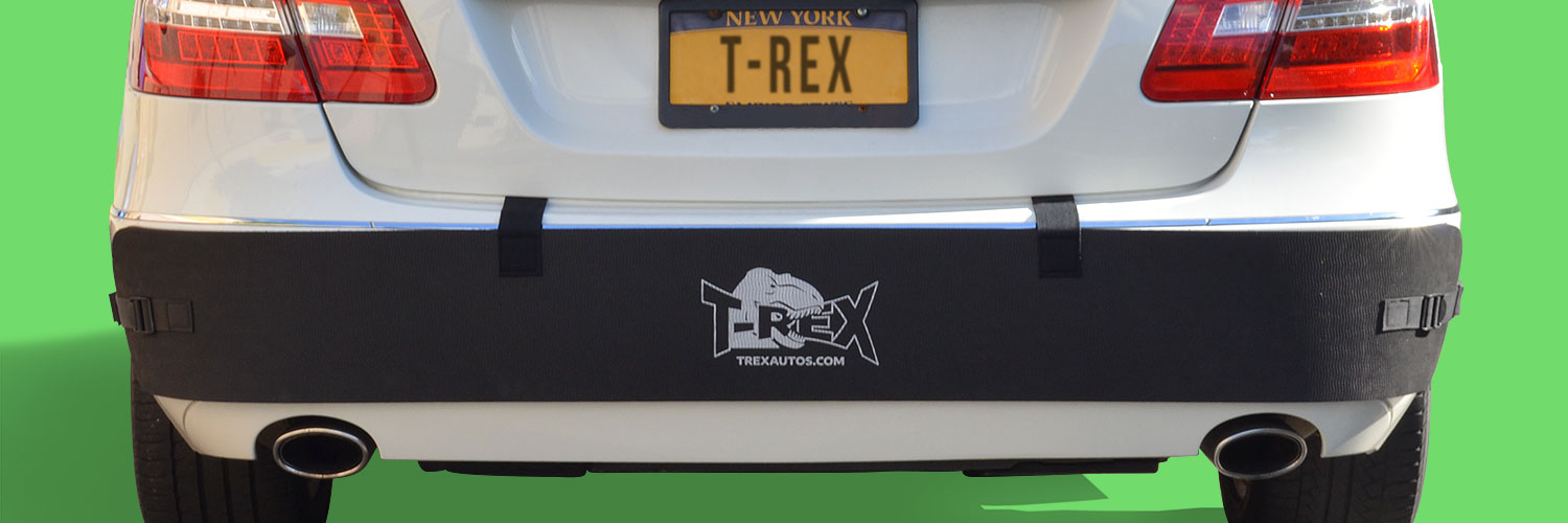 4 High Front or Rear Bumper Guard for Cars T-Rex Bumper Protector